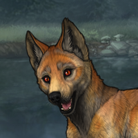 - puppy - Headshot