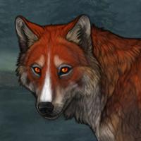 322 6m fox eyes HEAT Headshot